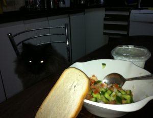 תמונה של חתול זומם על האוכל של בעליו