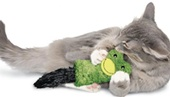 עכבר עם קטניפ. קטניפ הינו עלים המיובשים מצמח בעל תכונות האוהב על החתולים וגורם להם להמשך למקום.