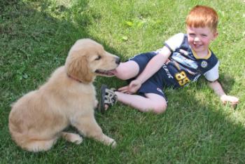 כלב אהוב עם ילד