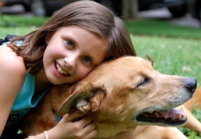 כלב וילדה סיפור אהבה