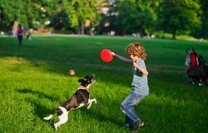 כושר עם הכלב