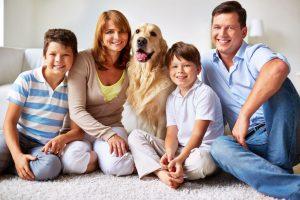 4. איך להכיר כלב חדש לבית למשפחה ולחיות אחרות