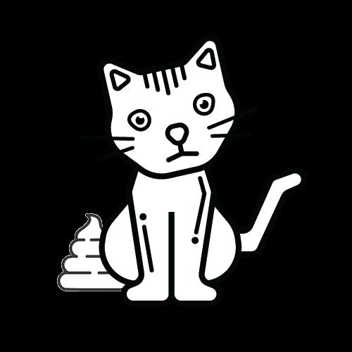 חתול קקי