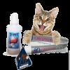 איך מונעים ריח רע מפה של החתול בלי לצחצח שניים?