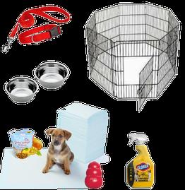 חבילת אימוץ כלב