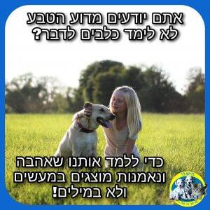 למה כלבים לא מדברים